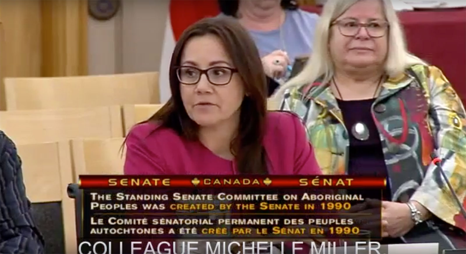 Presentation on 3 Nations to Senate Committee in Ottawa